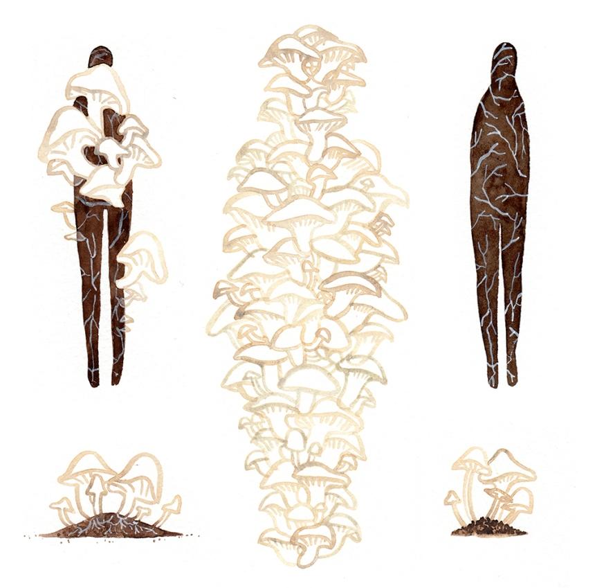 monicaramos-death-mushroom